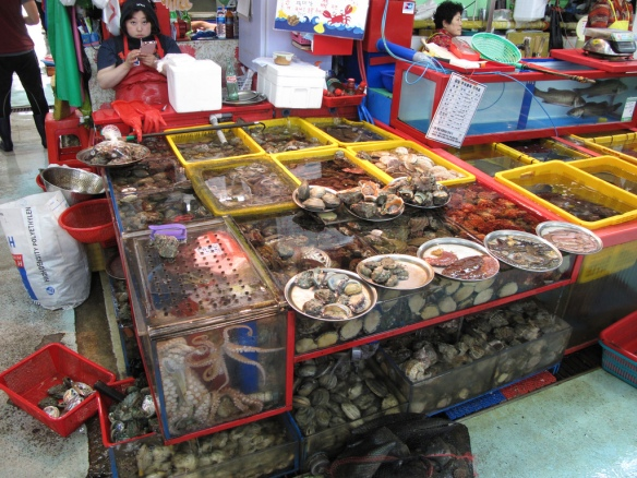 Jagalchi fish market was a pretty cool place to visit, with tons of live fish, clams, crabs, octopi, etc.