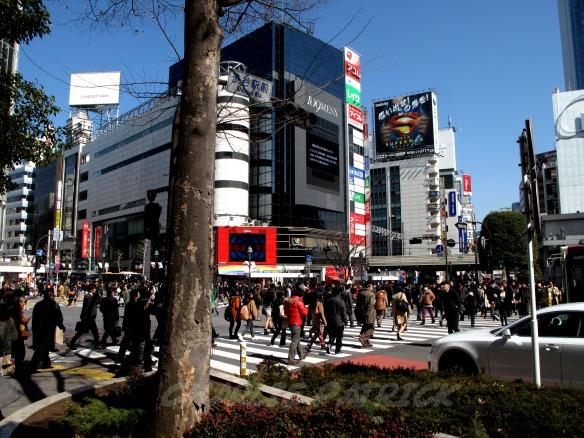 Shibuya scramble crossing - Tokyo, Japan