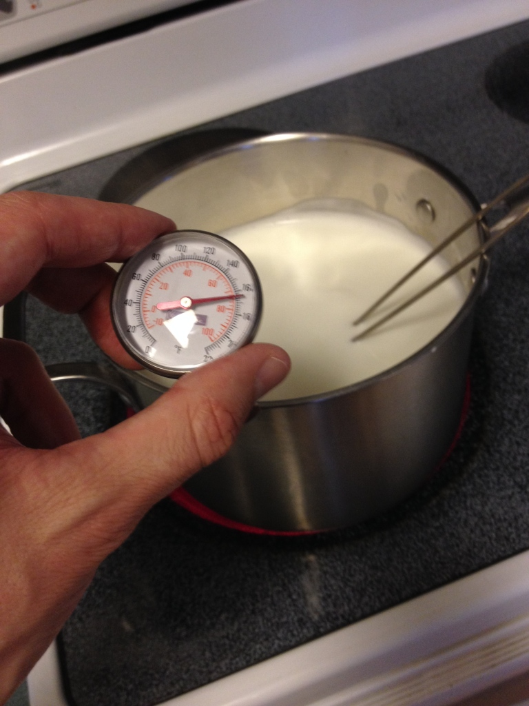 So heating milk up to 95C means constantly checking the thermometer and stirring. Kinda hard to break for a picture.